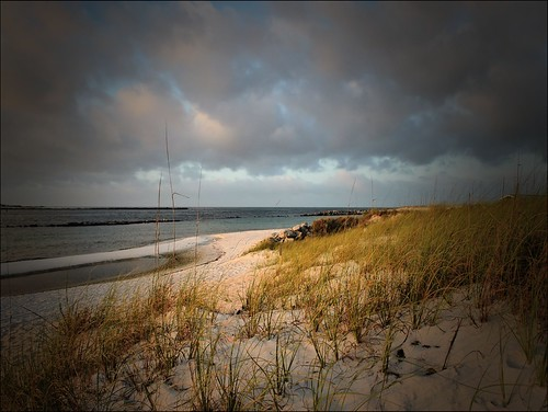 beach gulfofmexico nature sand florida earlymorning panamacitybeach seaoats standrewsstatepark corelpaintshoppro floridastateparks baycountyflorida nkond100 nikkor1855afsvrlens me2youphotographylevel2 me2youphotographylevel1