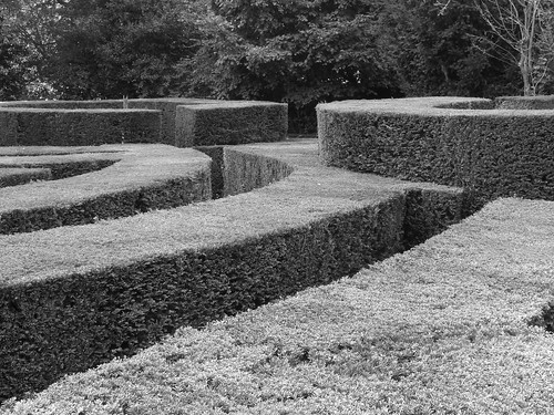 Hedge maze | by chad_k