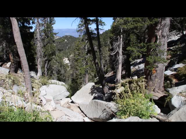 200 Video of Lower Bed Springs Crossing on the PCT (Fuller Ridge Trail)
