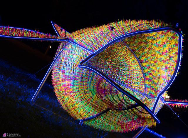 Der leuchtende Wal