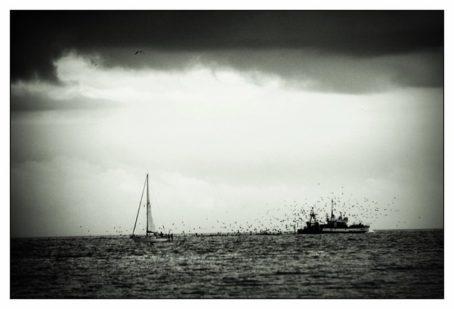 But we won't stop till we're under a black sky ~ Sam Phillips