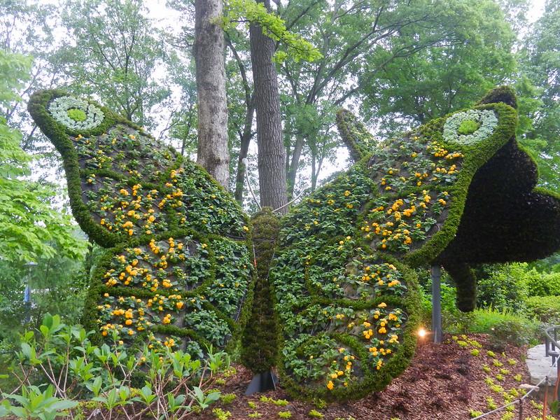 Atlanta Botanical Garden--2013-05-01