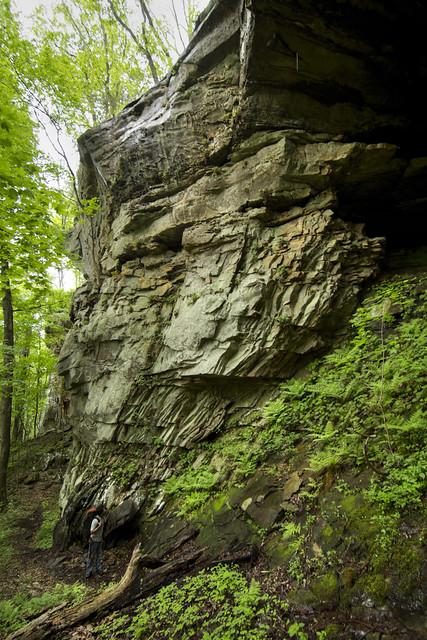 Pennsylvanian sandstone cliffs, White Co, TN