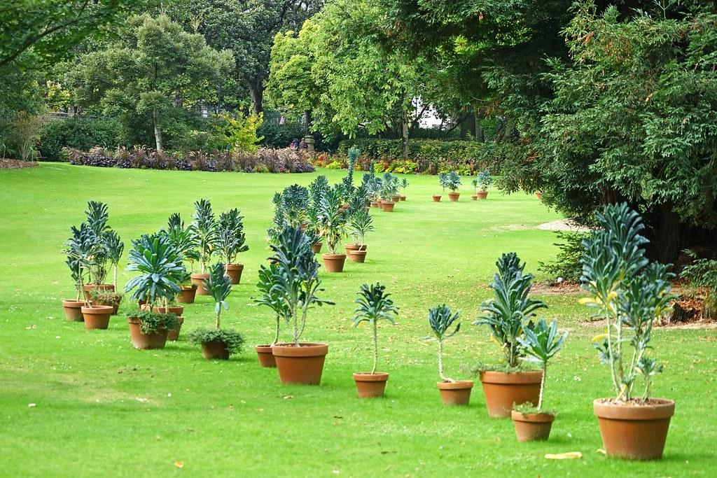 Les Koifanchoux de C. Ponti (Jardin des plantes, Nantes) | Flickr