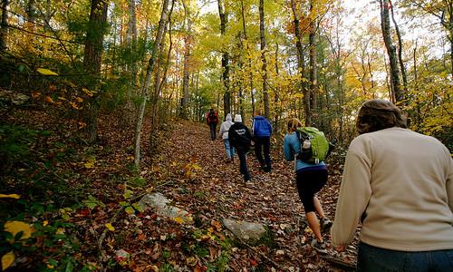Grab friends. Go hike. Find joy.