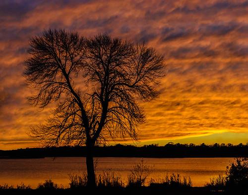 sunset silhouette wisconsin clouds unitedstates mukwonago altostratusclouds