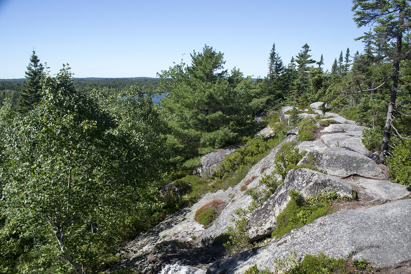 The Bluff Wilderness Trail