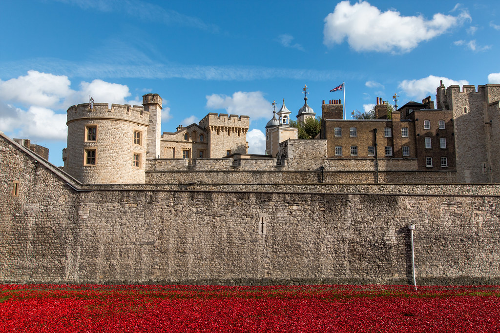 888,246 poppies.  Each poppy represents a British military live lost during World War One. Created by artists Paul Cummins and Tom Piper.
