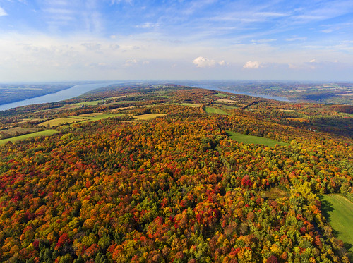 fall autumn colorful foliage rainbow amazing fingerlakes landscape aerial aerialphotography 2016 dji djiphantom4 drones drone uav uas protected ripleyhill nature peace peaceful untouched life leaves tree trees forest