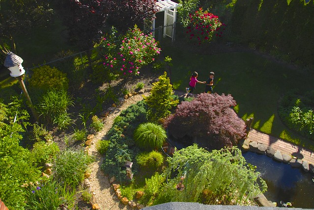 Garden view from the rooftop!