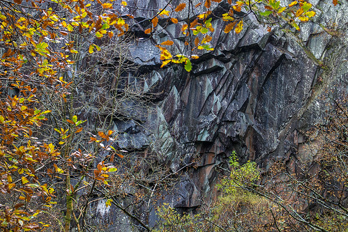 Slate and Autumn leaves | by johnkaysleftleg