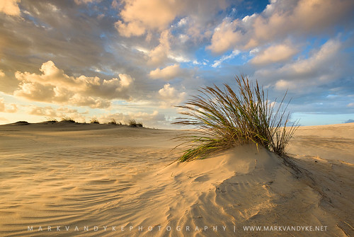 northcarolina carolina nc coast coastal jockeysridgestatepark statepark northcarolinastatepark nagshead hermine storm clouds golden evening sand activesanddunesystem ripples texture wind grass darecounty outerbanks obx lastlight outdoors outside landscape outdoorphotography