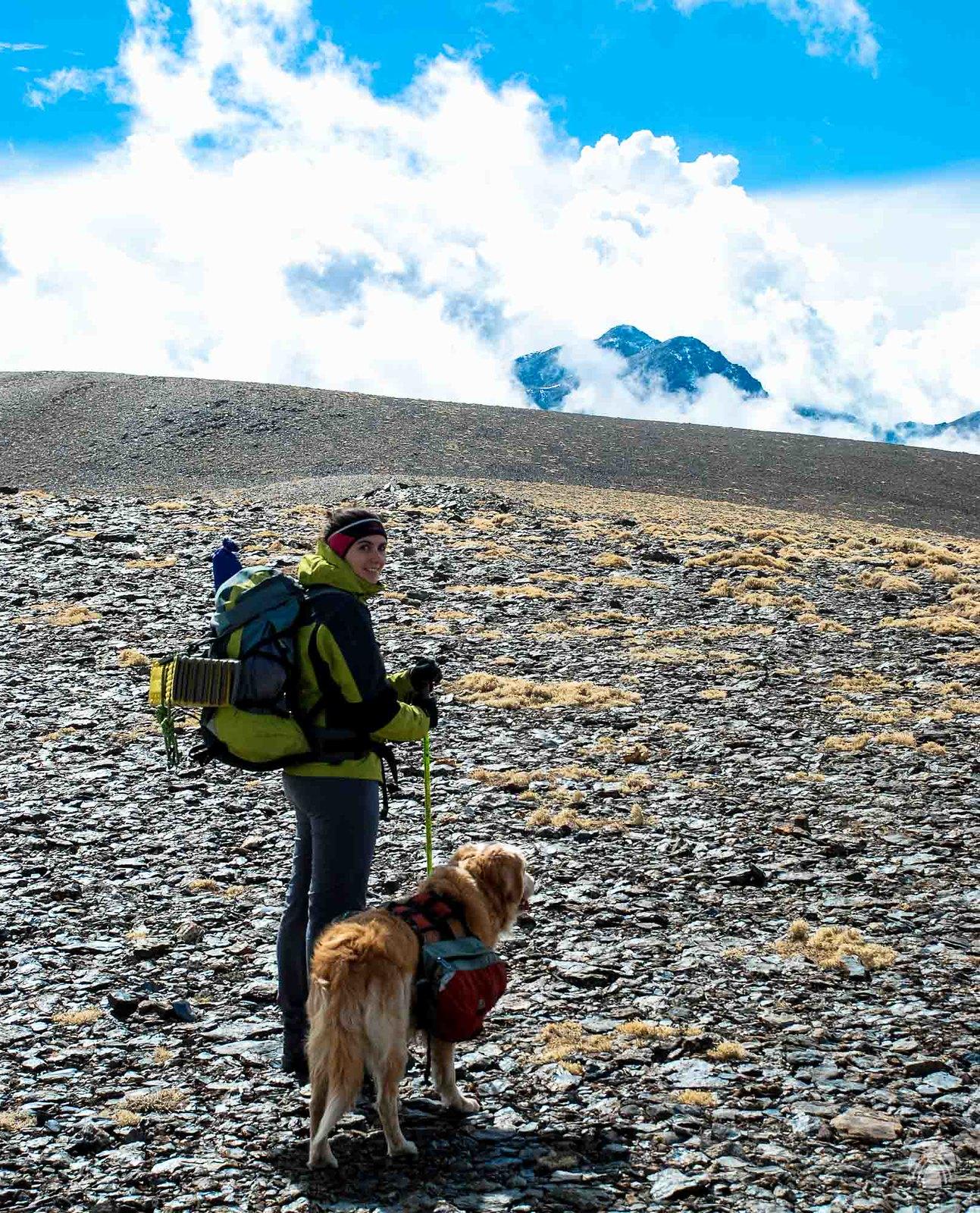 Las más altas cumbres de Sierra Nevada asoman al fondo