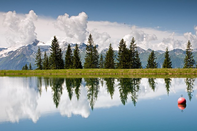 Mountain Lake and Firs with Reflection