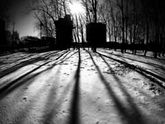 Griffintown park winter shadows