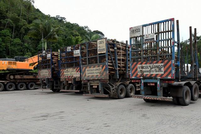 01 Posto 180407 001 Carretas de eucalipto madeira estacionadas  trator