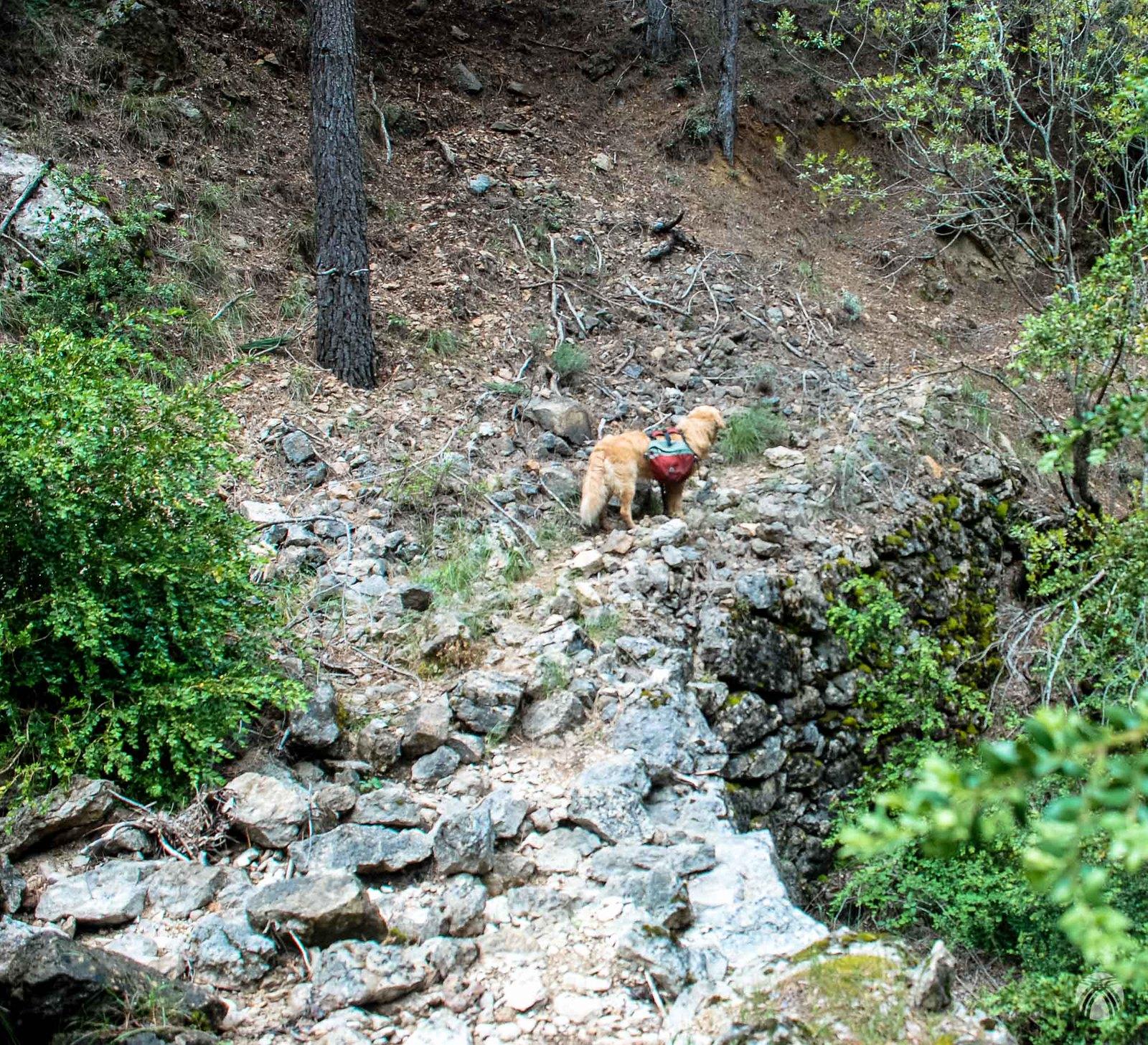 Hormas del viejo camino que enlazaba el Quejigal (Fresnedilla) con Roblehondo