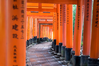 Walking the Torii path across the mountain | by fbkphotography