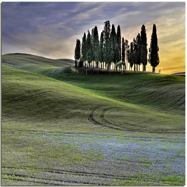 Tuscan sinuosity