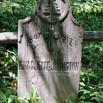 Wooden Grave - Charlotte Johnson