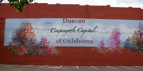 flowers trees summer plants usa oklahoma murals photographs northamerica wallpapers theaters duncan waymarks