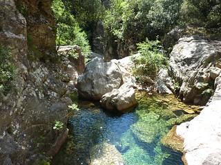 :Remontée du Carciara : dans le lit du ruisseau, une vasque à contourner