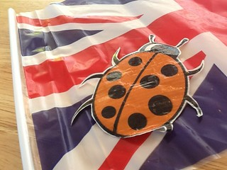 ftt ladybird is irritated by a flag