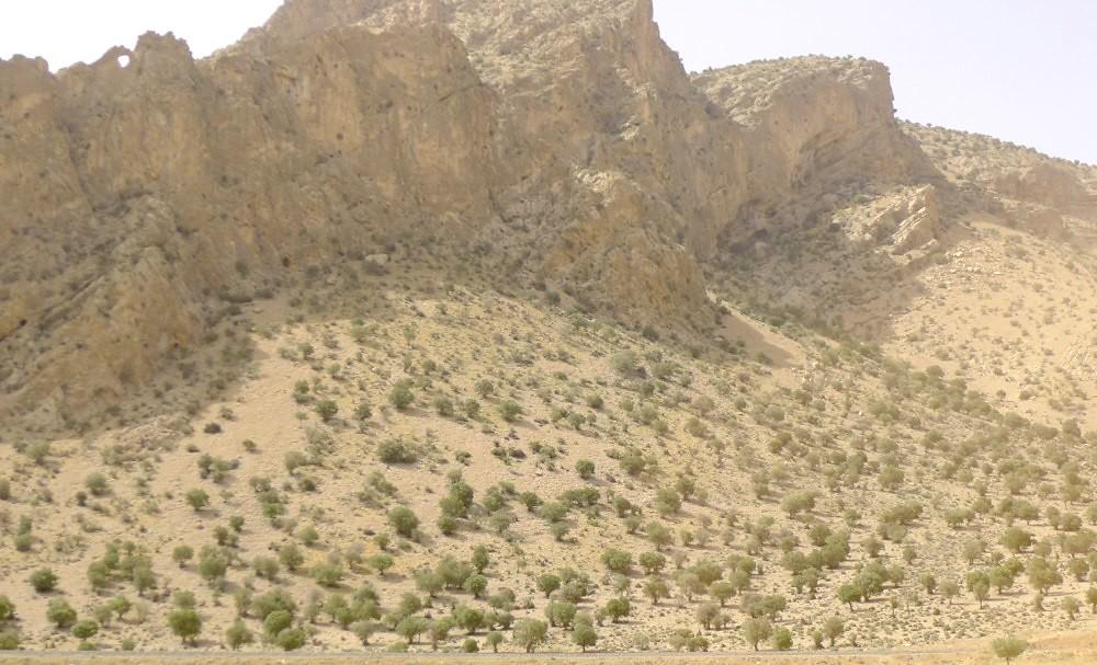 yazd-shiraz-L1030136