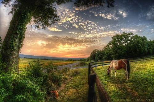 road sunset usa mountain tree cat fence landscape virginia nikon fisheye pastoral tomlussier landscapespec2012
