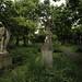 York Cemetery angels