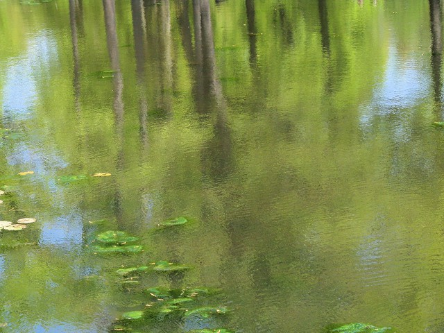 Water Abstraction Monet