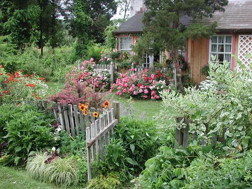 Flower Carpet Roses Behind Cottage Garden Gate Flower