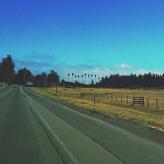 yesterday's road | by sarahwulfeck