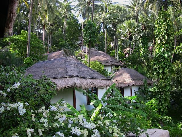 THAILAND-Phuket , Surin , Bungalows im Grünen ,  2