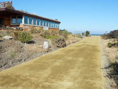 Heron's Head walking path is now a road -- synthetic & hard as concrete