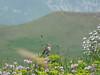 Ughtasar – na zpáteční cestě, foto: Petr Nejedlý