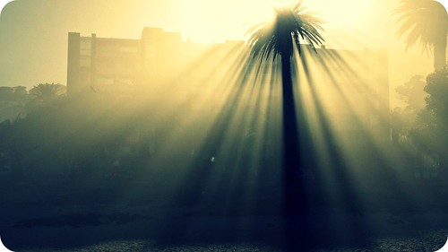 morning light love beach nature sunshine sunrise capetown vanmorrison intothemystic