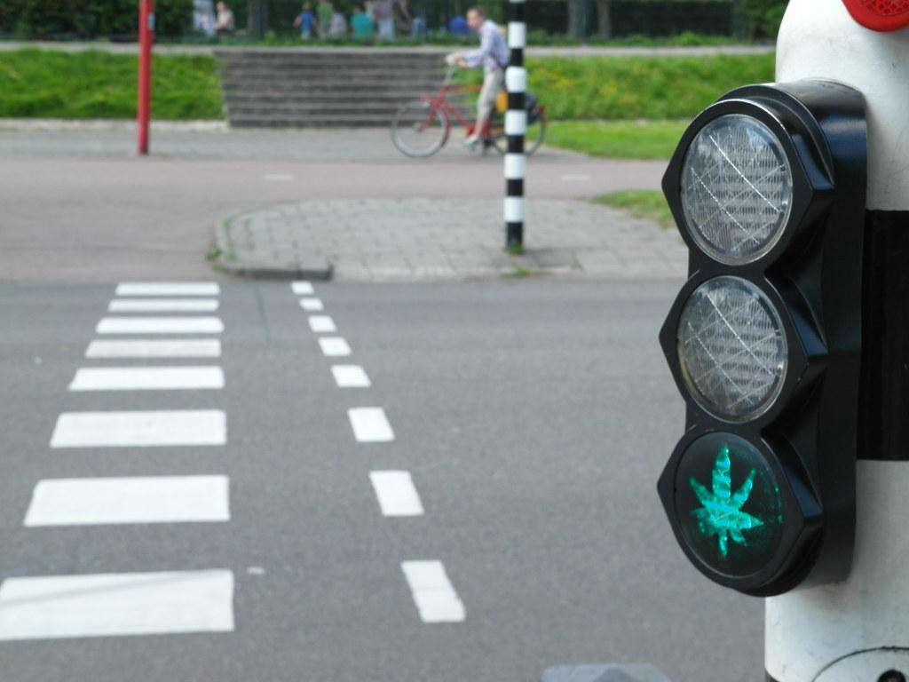 """Résultat de recherche d'images pour """"weed bike"""""""