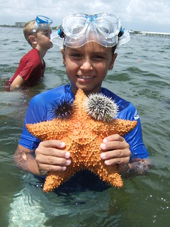 Nathan with a cushion starfish | by AdventureMIke.com