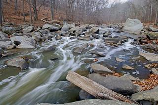 Rock Creek rapids | by NatureServe