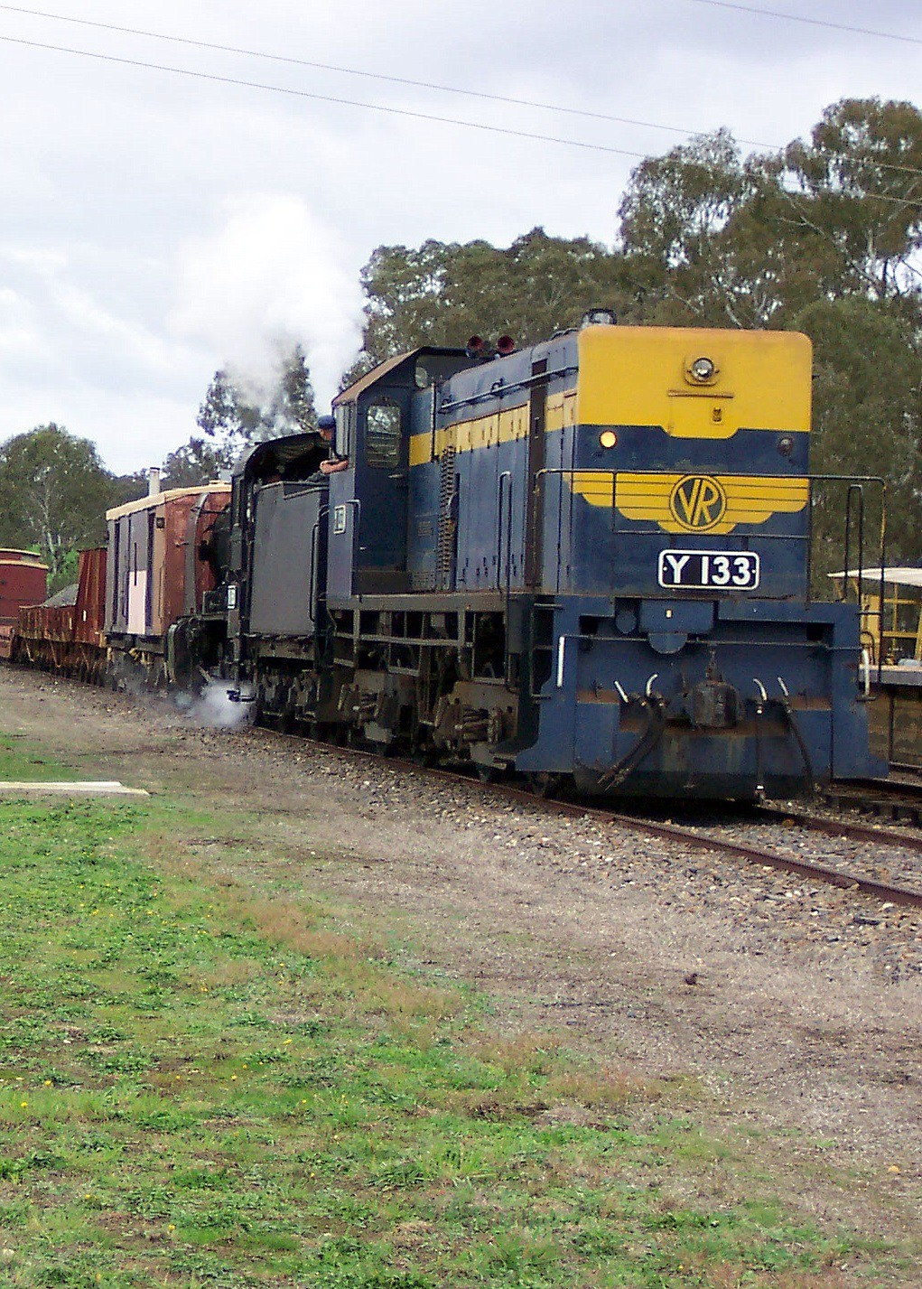 Y133 at Muckleford by LC501