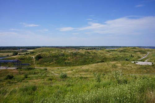Stige-Oe-Landskab-2014-07-04 (13)