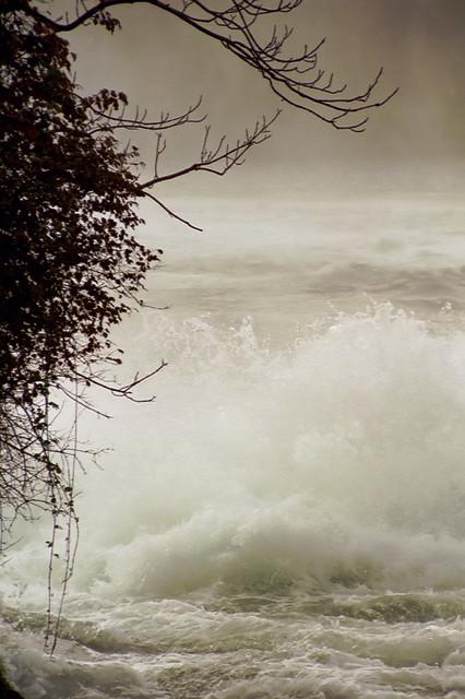 Rheinfall (n006521a)