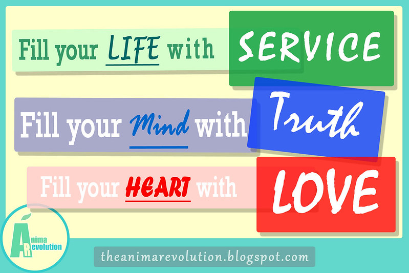 EN_anima_revolution_HD_wallpaper_fondodepantalla-full-colour_animar_quote_advice_proverb_images_facebook_twitter_fb_blog_cc_creative_commons_FILL_life_0001