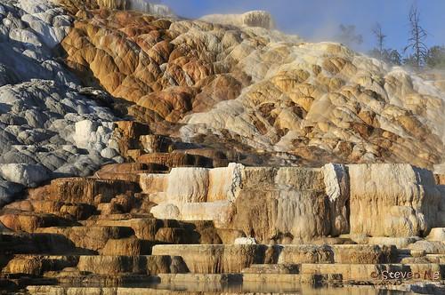 yellowstonenationalpark mammothhotsprings nikon2470mmf28g nikongp1 nikond300s sunriseonlowerterraces lowerterracesareas