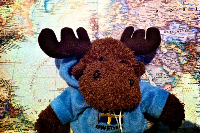 104/366: Elk from Sweden