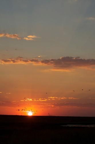 sunset southafrica photography heidelberg suikerbosrand