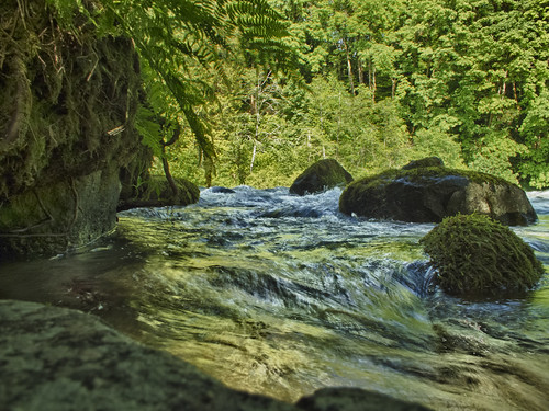 canada nature water port rainforest bc stones falls rapids pacificnorthwest hdr alberni rushing scottdarbey