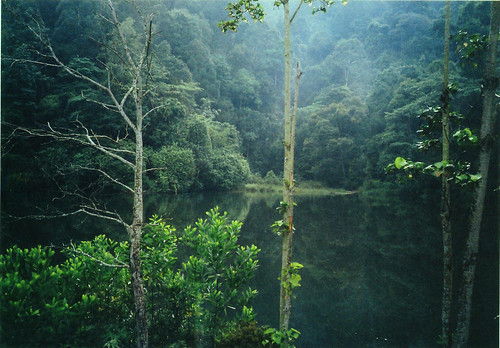 lake green vivid olympus xa3 rembau