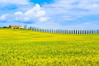 Living the Dream in Tuscany | by AllardSchager.com